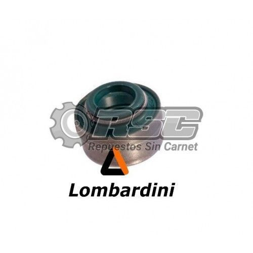 RETEN VALVULA MOTOR LOMBARDINI LDW 502